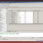 Hytera CPS unter Ubuntu in einer virtuellen Windows-7-Umgebung.